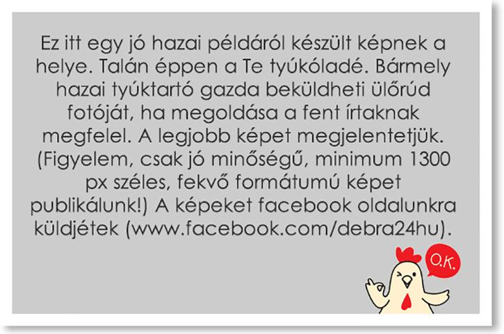 Küldj képet!